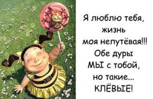 я люблю тебя жизнь