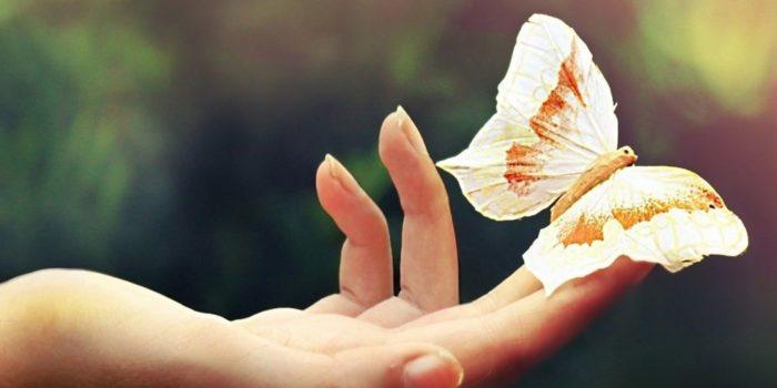 Как полюбить жизнь и радоваться
